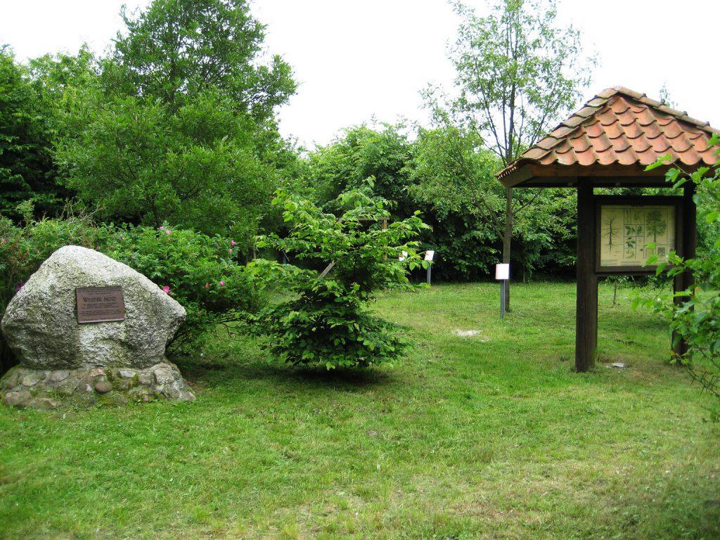 bidl-13-a-eichenwald